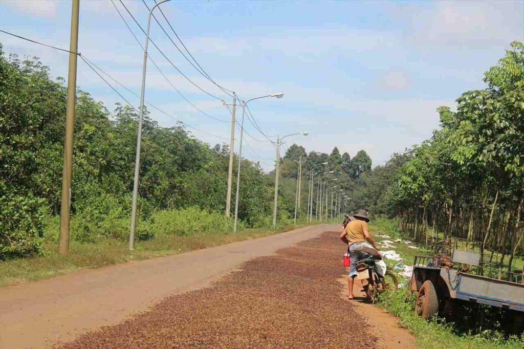 ドンナイ省の田舎風景